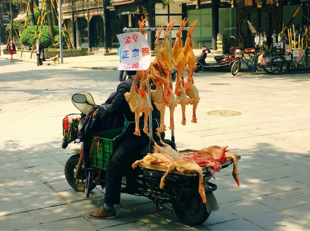 The streets of Chengdu could be interesting. Here's an itinerant peddler selling fresh chickens. Never thought of just buying a dead, cleaned chicken from a guy on a scooter before.