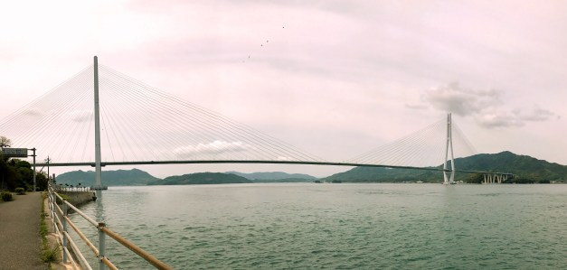One more picture of that cable-stayed bridge