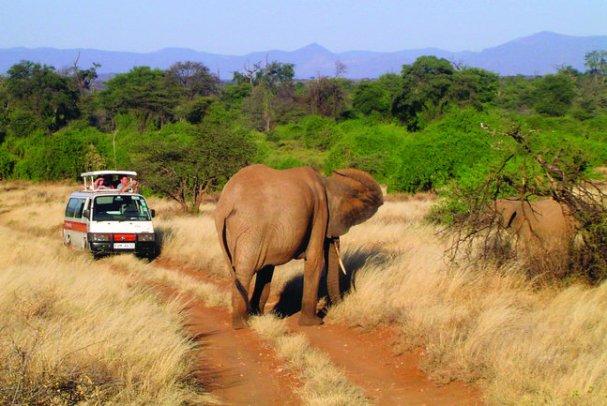 masai-mara-safari---mms4-s3