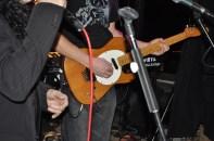 dobis franken-tele guitar killer tones