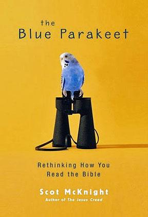 mcknight-blue-parakeet-4.jpg