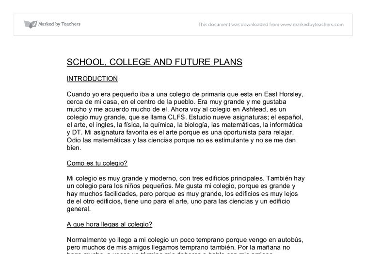 plan for the future essay