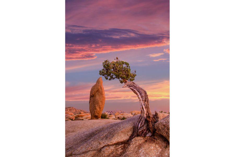 Mark Epstein Photo | Sunset on the Sentinels