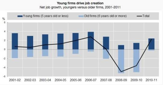 Young Firms