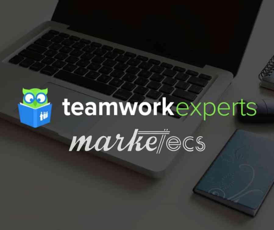 Teamwork project management expert