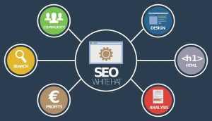L'importance et le besoin du SEO sur un site