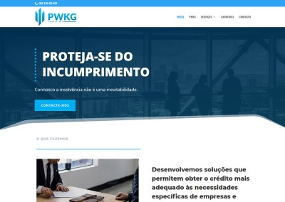 PWKG Consulting