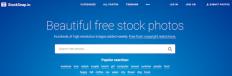 stocksnap imagenes con licencia creative commons gratis
