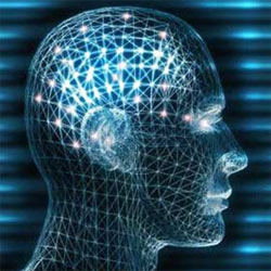Neuromarketing: La empatía con el cliente es clave