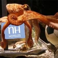 NH Hoteles se suma al tirón del pulpo Paul