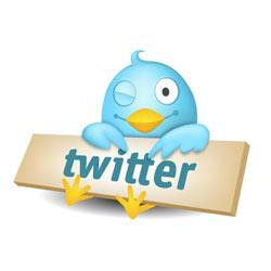 Los expertos en social media marketing confían en Twitter