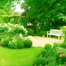 El jardín de la empresa, un espacio para plantar nuevas ideas en equipo