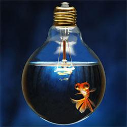 """""""The Festival of Media Global 2011"""": la tecnología deja más espacio a la creatividad"""