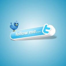 Todo lo que necesitas saber sobre Twitter