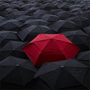 La imagen de las marcas paraguas empata en importancia con la de las submarcas