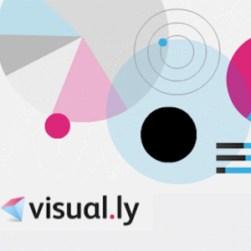 """""""Se vende"""" infografía, razón: Visual.ly"""