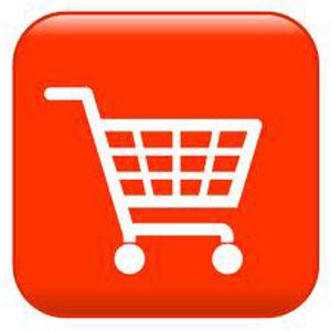 Cómo conseguir la tienda online perfecta en 21 pasos