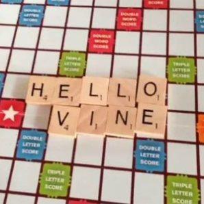 """Lo que funciona y lo que no en el marketing en Vine, la """"recién nacida"""" del universo 2.0"""