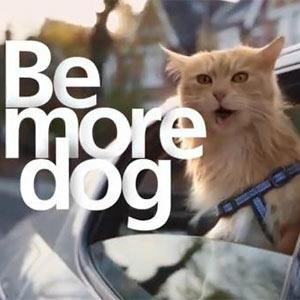 O2 nos anima en un nuevo spot a ser más perros y menos gatos