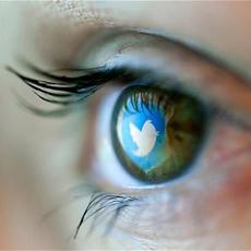 twitter data grant1