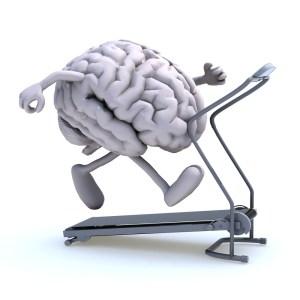 cerebro-300x300