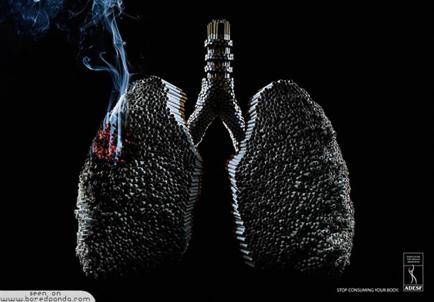 tabaco15