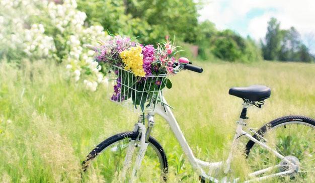 Compre todo para su bici de forma fácil