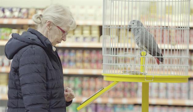 El simpático loro de esta campaña habla por los codos y vende seguros como churros
