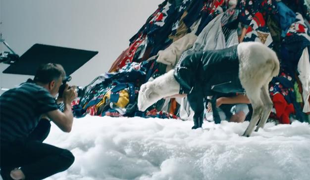 Diesel quiere acabar con los suéteres navideños con la ayuda de una oveja