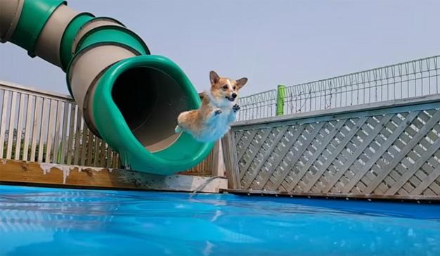 10 aspectos que tener en cuenta antes de lanzarse a la piscina en YouTube