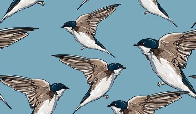 3 trampolines sobre los que Twitter debe impulsarse este 2018 para volar alto