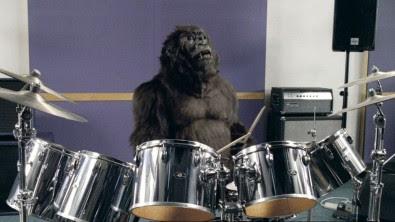 dairy-milk-gorilla
