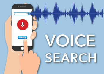Optimize the Use of Voice Search