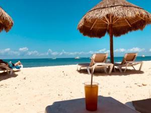 Coronavirus Vs Holidays