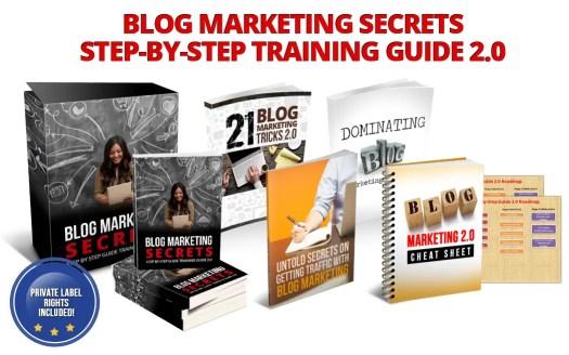 blog marketing secrets plr