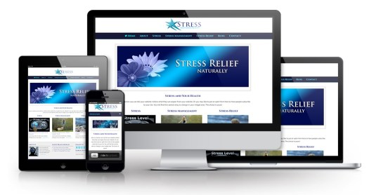 Stress and Your Health PLR