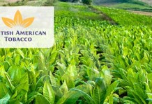 BATN Compensates Tobacco Farmers For Child Labour Policy Compliance-marketingspace.com.ng