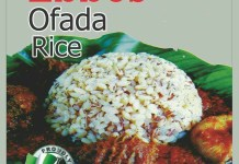 Ebbos Glorious Limited Launches 0.9kg Ofada Rice-marketingspace.com.ng