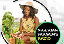 Nigerian Farmers Radio To Focus On Improving Access To Credit For Farming-marketingspace.com.ng