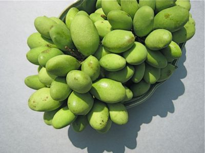 Image of two bunches of paho