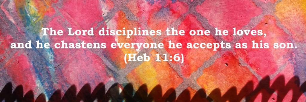 The Lord disciplines the one he loves, and he chastens everyone he accepts as his son. (Heb 11:6)