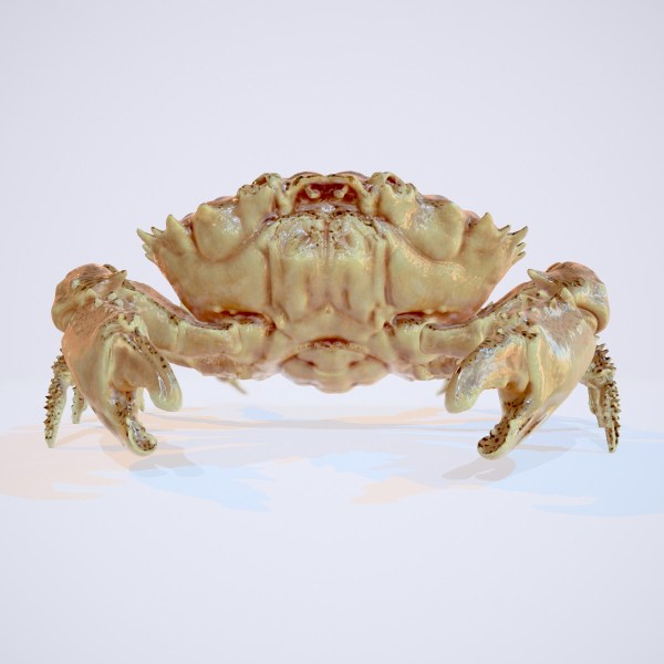 Crab Rigged 3D Model