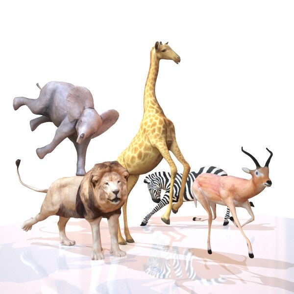 Safari Animal collection Mark Florquin 3D Model Rigged