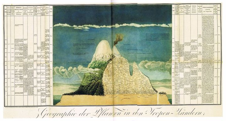 Alexander von Humboldt's famous infographic of Chimborazo (Picture: Wikimedia Commons)