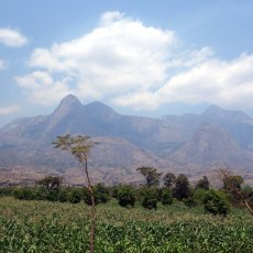 Legends of Mulanje, Africa's misty mountain