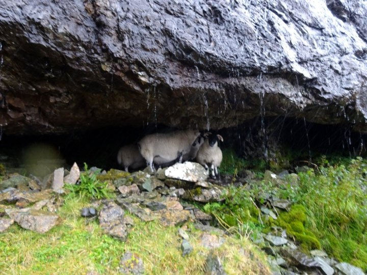 Skye is notorious for the sort of conditions where even the sheep have to take shelter
