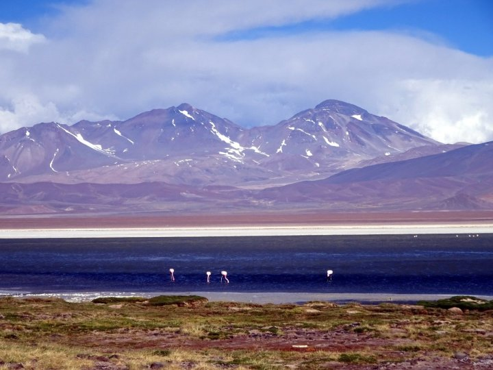 We spent many a peaceful moment sitting by the waterside, watching the flamingos as we looked across to the Tres Cruces