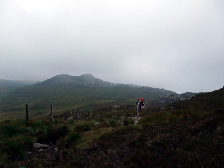 Walker looks up at misty view of Moel Meirch