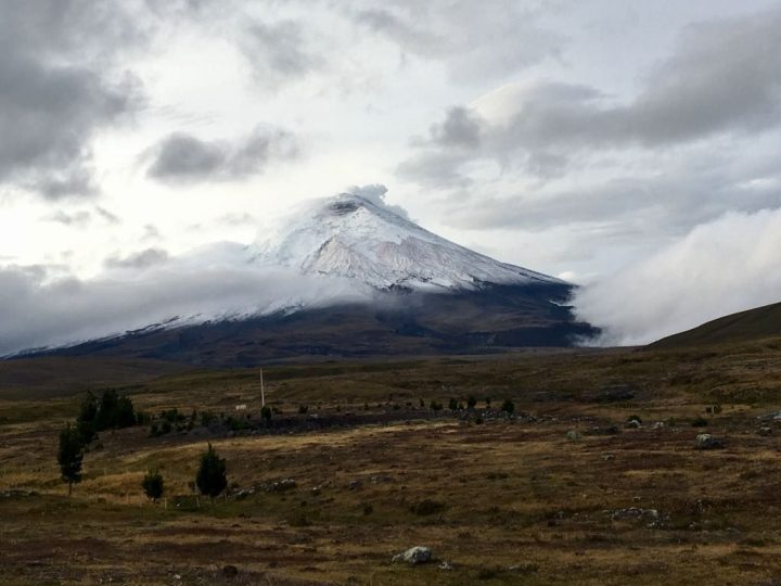 Gas release on Cotopaxi last month, seen from the drive to Sincholagua (Photo: Edita Nichols)