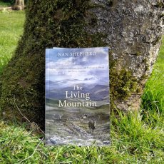 What I'm learning from Robert Macfarlane's reading group about Nan Shepherd's The Living Mountain